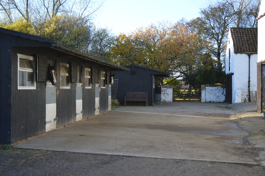 Some of the boxes on the yard